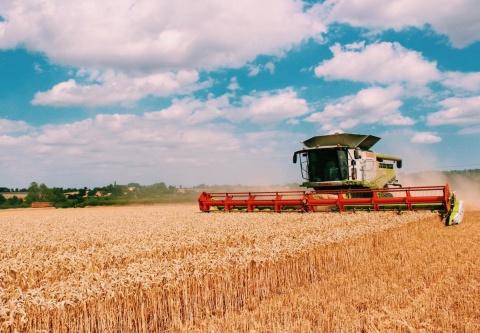 Сельское хозяйство - заказать курсовые, дипломные